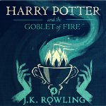 Harry Potter The Goblet of Fire | Shortrounds Knitwear